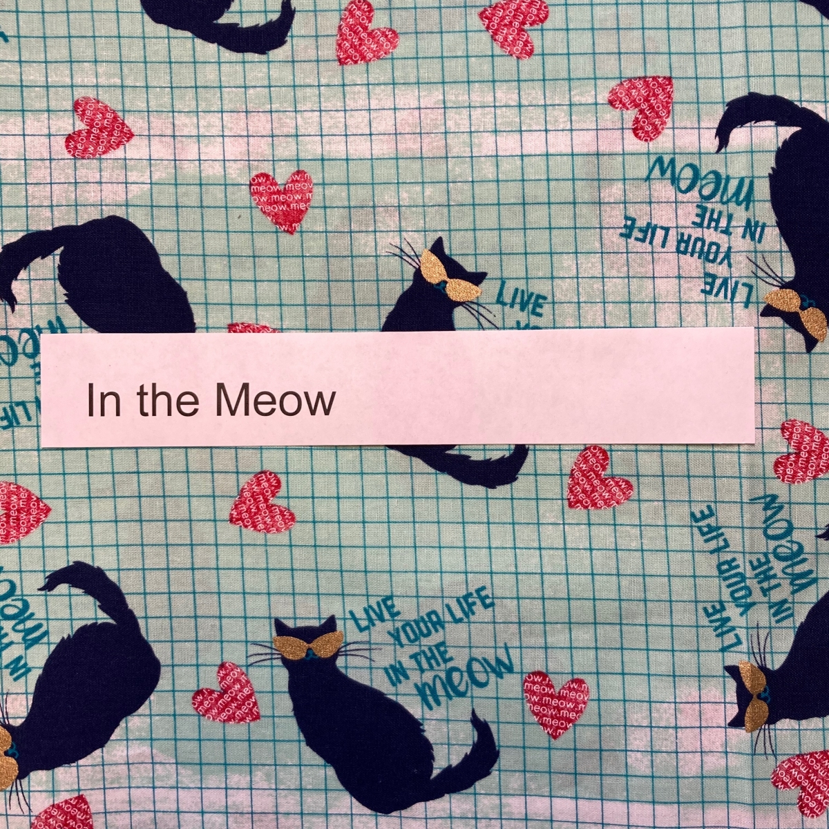 in-the-meow-animals