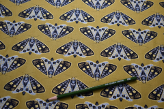 Gold-Dwell-In-Possibility-Moths-Cotton-scaled