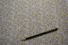 Gray-Flowers-for-Freya-Plant-Cotton