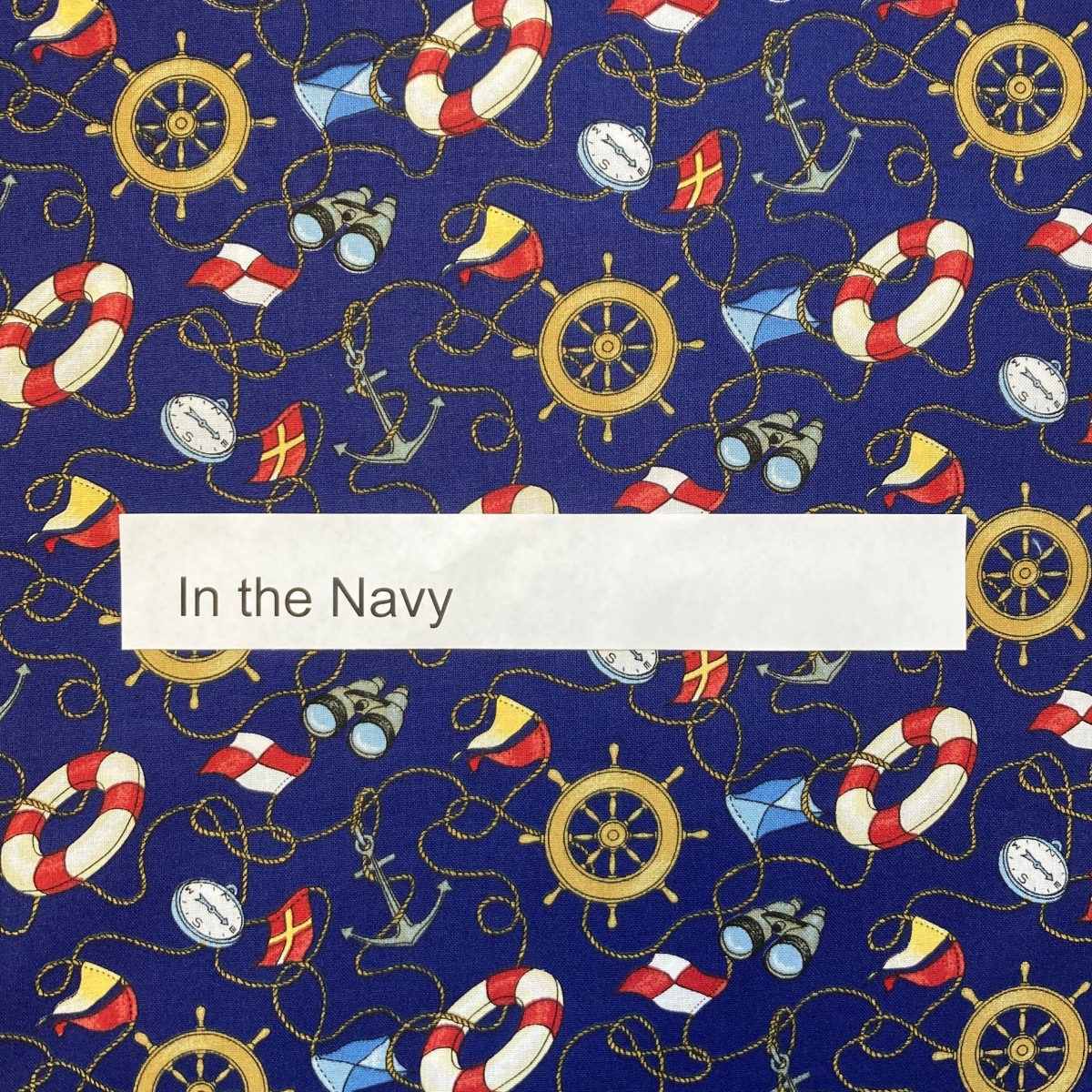 in-the-navy-special-interest
