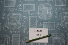 game-day-special-interest