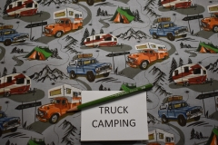 truck-camping-special-interest