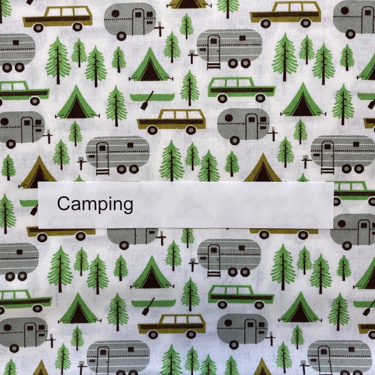 camping-special-interest